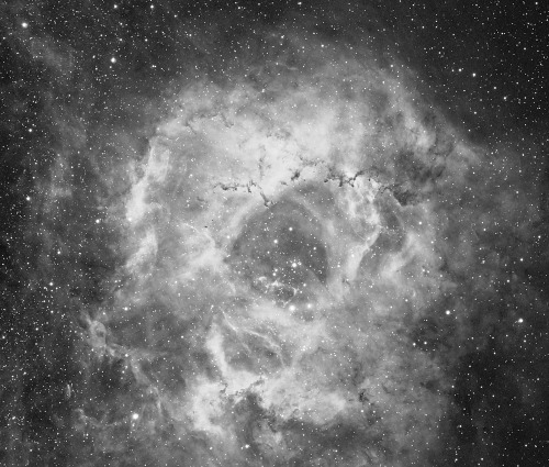 underthecloudmoppedskies:  The Rosette Nebula.