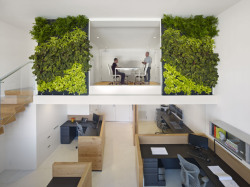 lie-u:  the offices of buck o'neill builders, san francisco via: archinect