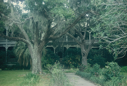 hitwizard:  Old plantation in Biloxi, Mississippi, 1961 by lreed76 on Flickr.   holy shit I want to be there so badly