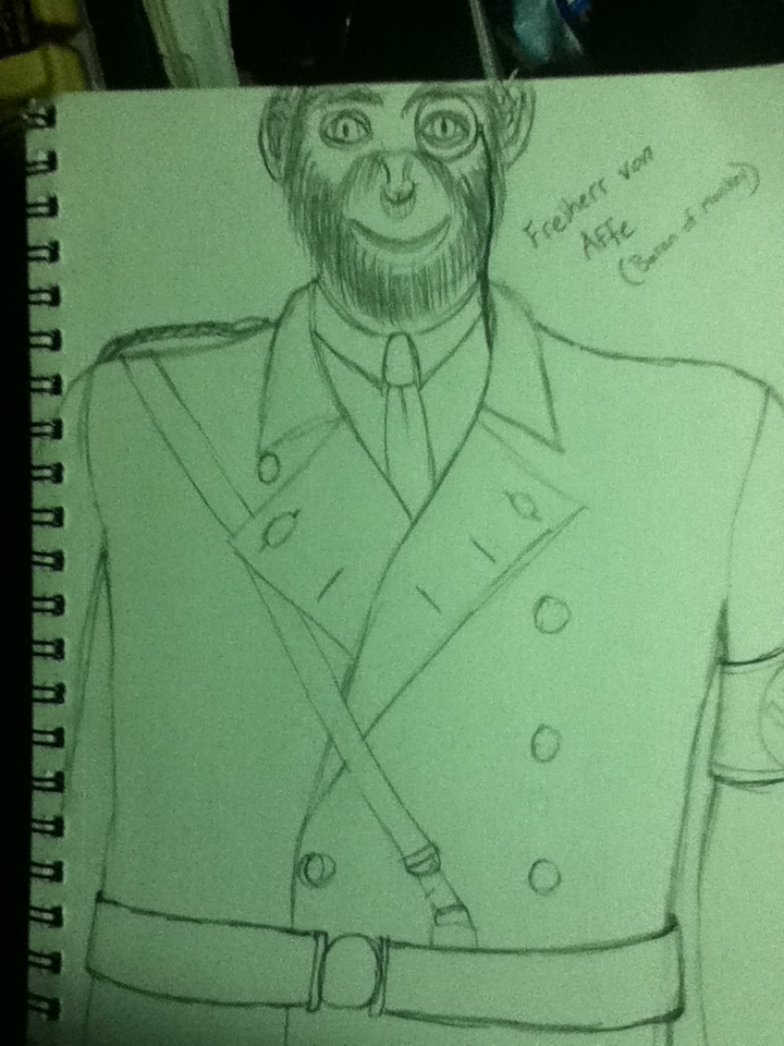'the evil Monkey General, with his monocle'.  Drawing this actually frightened me a bit.