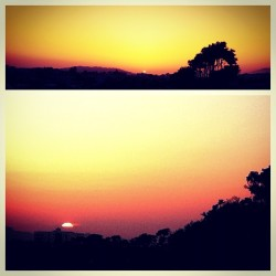 #sunset #sky #horizon #lookingup #sun (Taken with instagram)