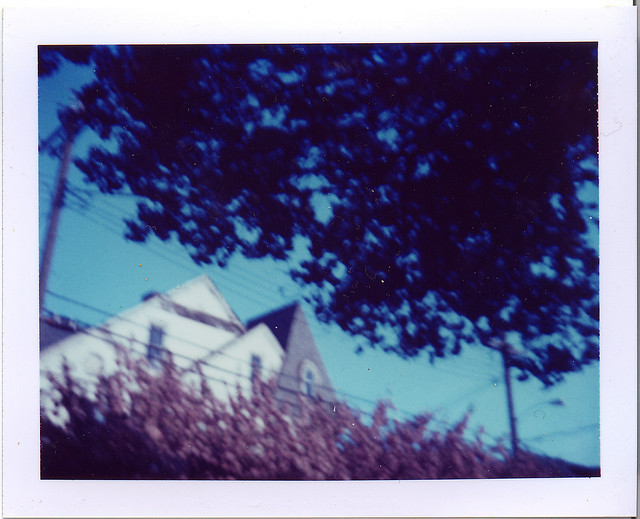 pink spring on Flickr. PHOTO FLASHBACK: Spring 2007 Ocean Grove, NJ [Polaroid Automatic 100 Land Camera]