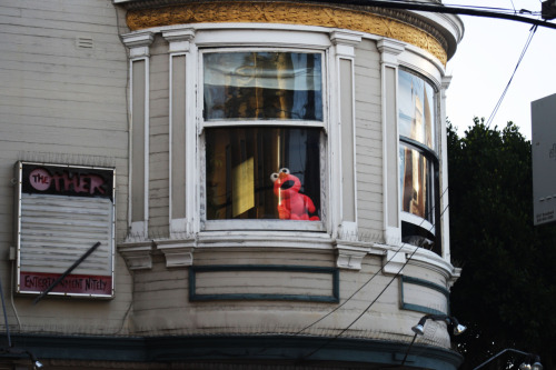 Finding Elmo in high places.
