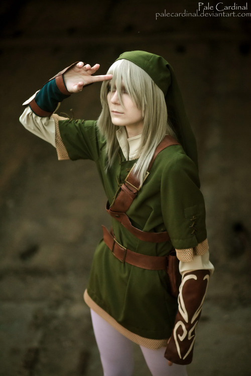 Submission Time! Link from The Legend of Zelda  Cosplayer: Pale Cardinal [ deviantArt | Tumblr ]