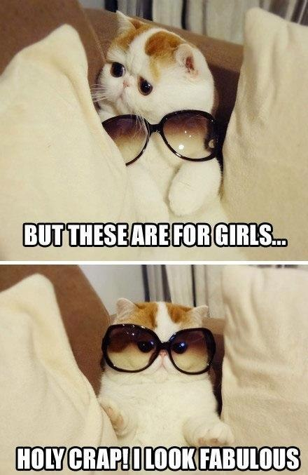 annapdos:  Every guy friend who has ever tried on my sunglasses.