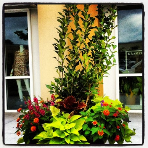 Planters at #Meadowgrove? I think so! (Taken with instagram)