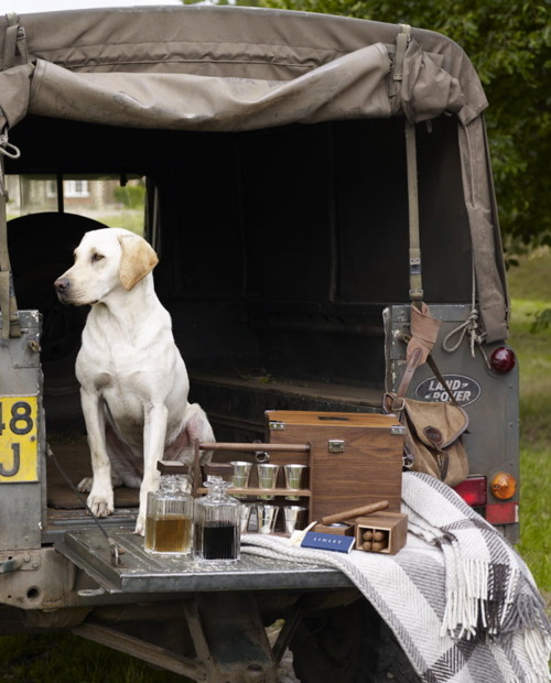 All A Man Needs…His #Dog #Scotch And Obviously A #Landrover