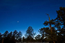 "Venus and the Forest at Twilight on a Full Moon, Happy Jack, Medicine Bow National Forest, Wyoming""For my part I know nothing with any certainty, but the sight of the stars makes me dream."" -Vincent Van Gogh"