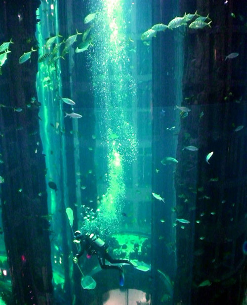 World's Largest Cylindrical Aquarium at Radisson Blu Hotel Berlin (via @boredpanda)
