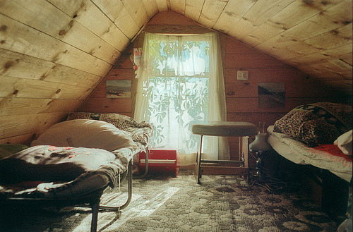 floralibus:  grandmother summer house (by anton lepashov)