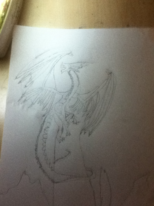 My 10 year old sister free hand drawing of a dragon. Very impressive