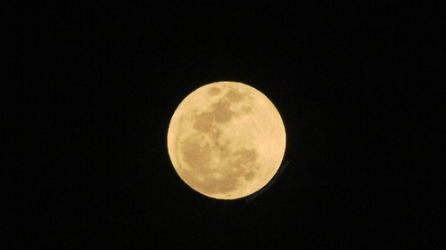 2012 Supermoon Images from Our Tumblr and Twitter Followers There were so many great images from Saturday's 'supermoon,' we decided to compile them together. We have images from Australia, El Salvador, Malta and Reno here.