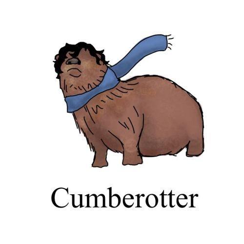 Otters are cool. Cumberotters are just the pinnacle of awesome.