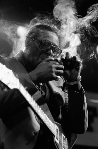 rootsnbluesfestival:  albert king  Smokin'
