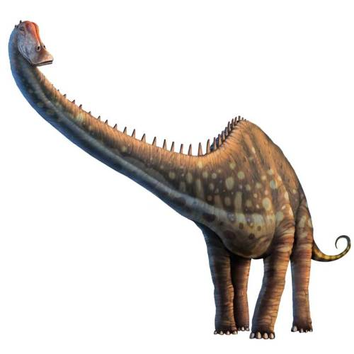 discoverynews:  Dinosaur Farts May Have Warmed Ancient Earth The greenhouse gas methane produced by all sauropods across the globe would have been about 520 million tons per year. keep reading  BEST HEADLINE EVER.