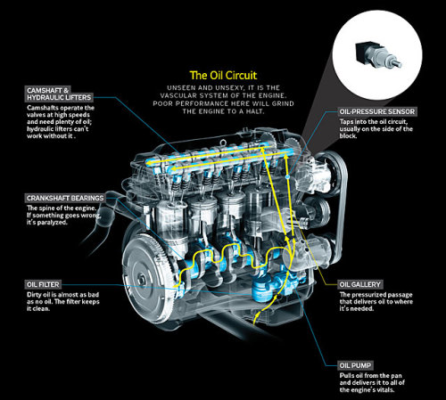 Your car's oil system. Illustration from: Why does your car's oil light come on?