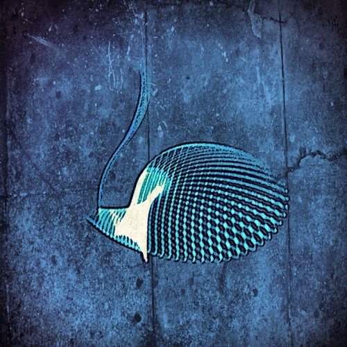 Fish graffito (Taken with instagram)