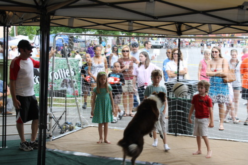 Soccer Collies playing with kids at Carrollton, GA Mayfest.