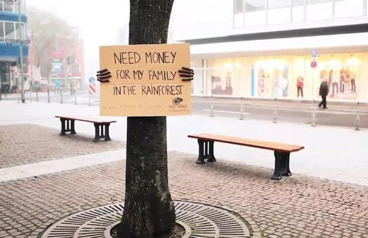 Even trees need money in our society. Le sigh.