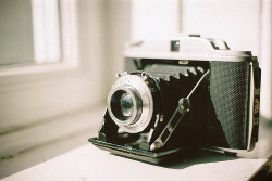 vintage-kisses:  I have this same camera on my shelf literally 2 feet away from me:-)