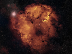 mostlystars:  Mosters of IC 1396