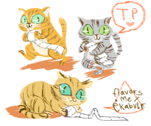 T.P taking Tabbies are stalking your bathrooms.