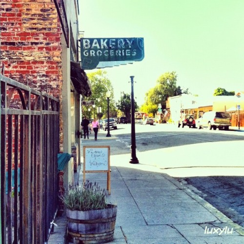 Get your groceries at the Bakery! #instawalksjb #igerssv #igerseastbay #igerssf #seecalifornia #instafamous #instagramhub #instagood #all_shots #photooftheday #gmy #clubsocial #gg #gg_forum #inkstagram #ink361 #dailydiscovery #primeshots #teamrebel #webstagram #statigram #gang_family #gf_usa #gf_daily  (Taken with Instagram at @IgersSV InstaWalk SJB)