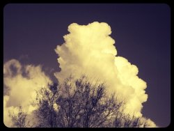 WowHeads forming in the clouds#CapturedMoment #nature #streamzoo #sky #cloudporn #beautiful #clouds #awesome #android #andrography(from @amplitude on Streamzoo)