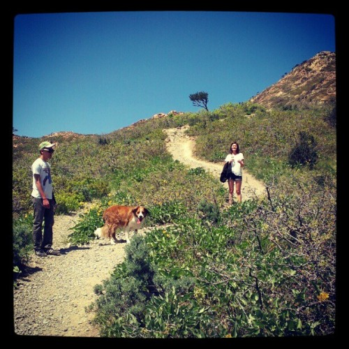 #hiking #dog #cute (Taken with instagram)