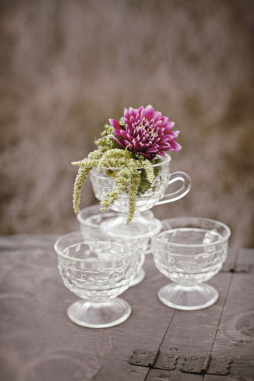 antique glass tea cups