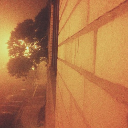 Foggy night #vscocam  (Taken with instagram)