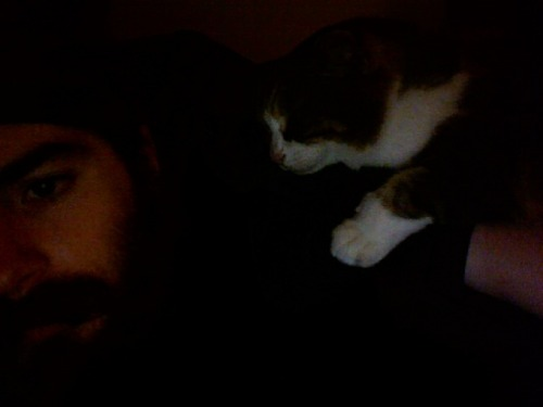 kitty's asleep on my shoulder