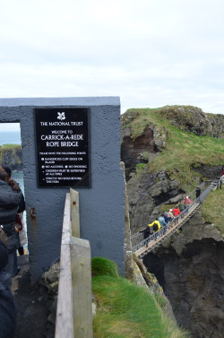 walkaboutchronicle:  Lining up to cross the Carrick-A-Rede Rope Bridge