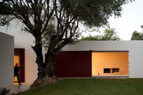 house of agostos ~ pedro domingos arquitectos