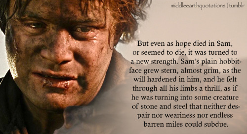 - About Sam, The Return of the King, Book VI, Mount Doom