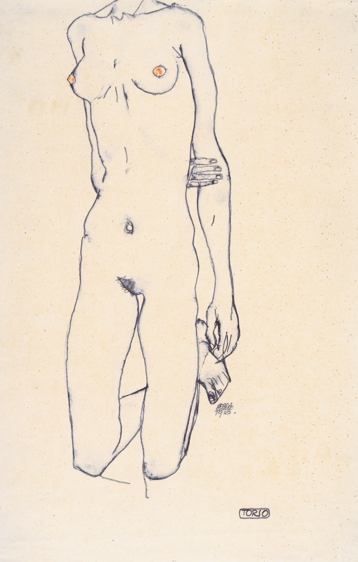 painites:  Schiele. Torso.  I have been particularly quiet of late, mainly because I have been working towards Blank Slate Gallery's inaugural exhibition INTERFACE, finishing my own sculpture, and working a job that will pay for the realisation of all of this. I am exhausted, but I am excited. For now, here's some Schiele, because he is working those lines (I can't even be serious about art now)