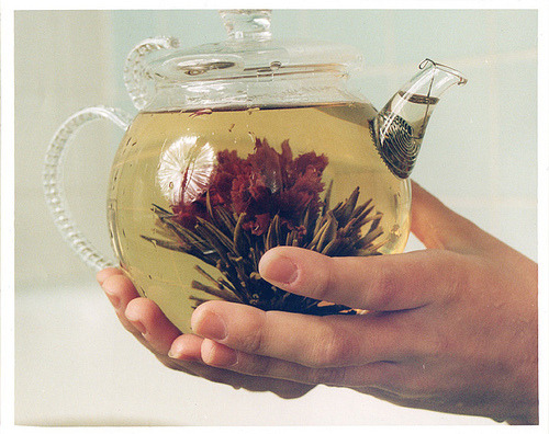 I finally brewed the tea flower I had been hanging on to for… maybe two years? Yeah, so it didn't quite look this good, but it was still pretty cute.