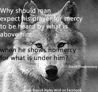 Man, Mercy and Animal Rights