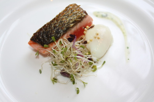 Pan fried Salmon with alfalfa, poached quail egg and a basil cream.