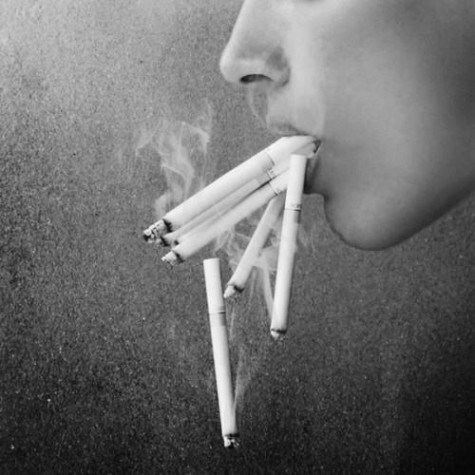 jalousie:  Well this is just a waste of cigarettes, but this photo is awesome