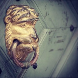Krakow doorknob #krakow,#doorknob,#door,#gold