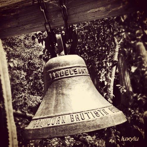 Mission Bell in the garden 🔔 #instawalksjb #igerssv #igerseastbay #igerssf #seecalifornia #instafamous #instagramhub #instagood #all_shots #photooftheday #gmy #clubsocial #gg #gg_forum #inkstagram #ink361 #dailydiscovery #primeshots #webstagram #statigram #gang_family #gf_usa #gf_daily  (Taken with Instagram at @IgersSV InstaWalk SJB)