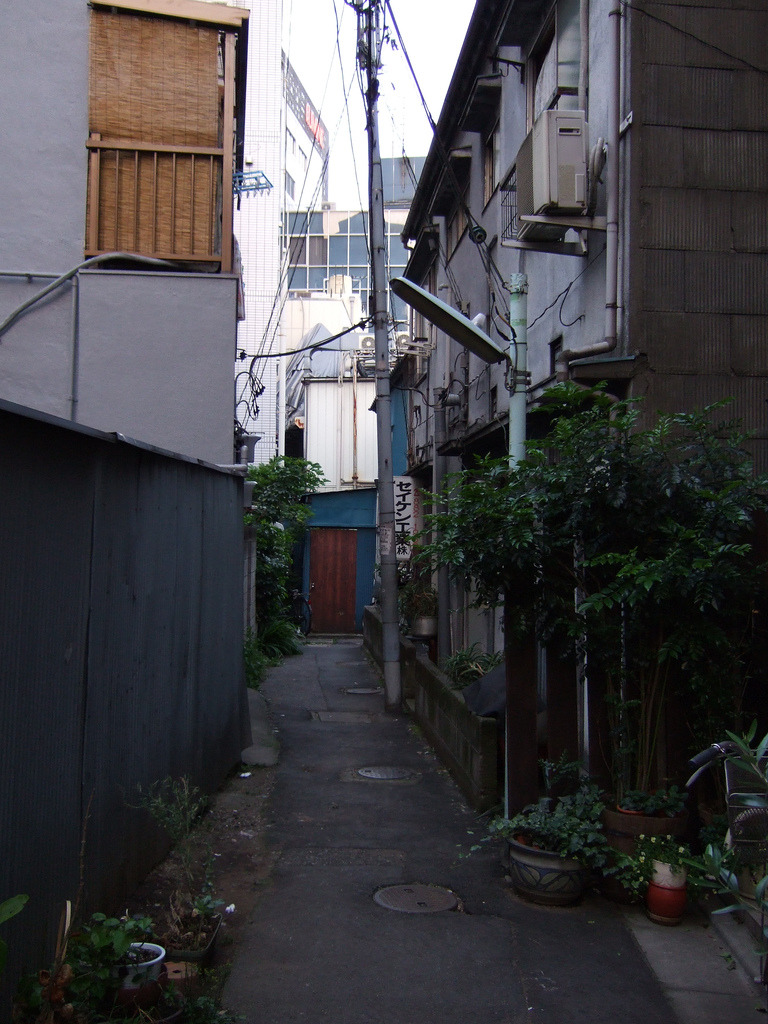 is it strange that I always find Japan alleyways so intriguing?