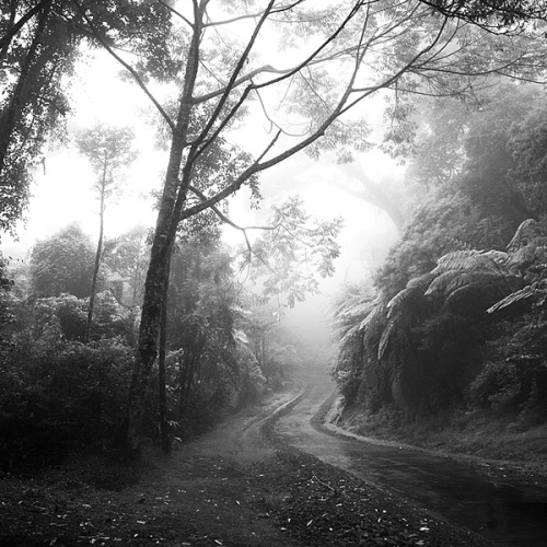 black-and-white:      by: Hengki Koentjoro