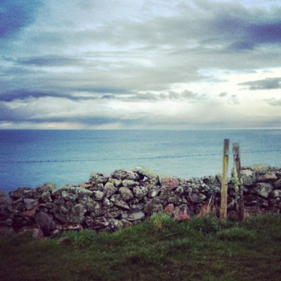 Looking out at sea #field #grass #farm #wall #stone #stones #stonewall #fence #wire #sea #ocean #water #sky #clouds #scotland #scenic #landscape #nature #wildlife #beautiful  (Taken with instagram)