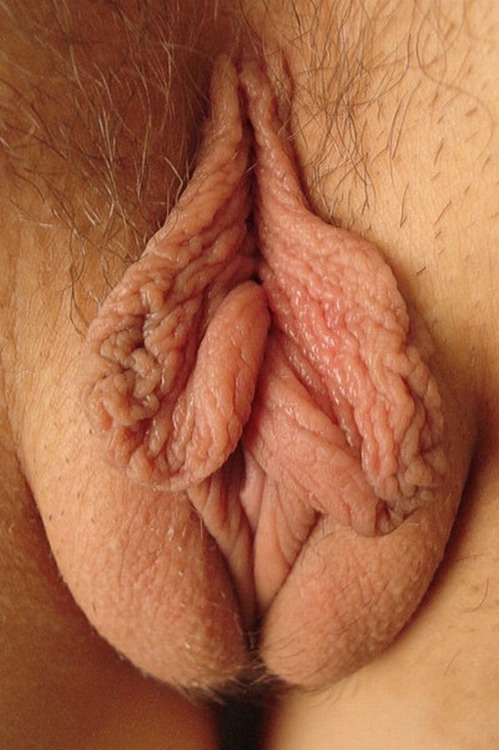 Labia Blossom… Best labia close-up ever!