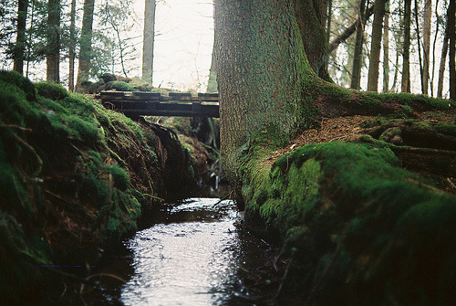 sunst0ne:  (by manuel&sebastian)