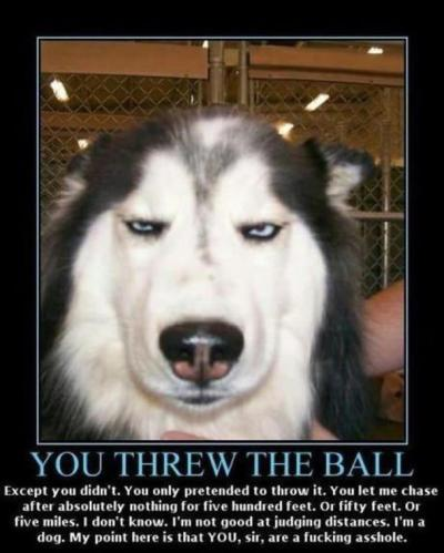 You. Threw. The. Ball. JK.