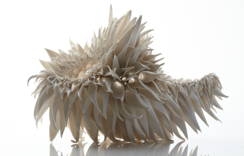 Nuala O'Donovan makes ceramic pieces that are patterned after nature. These are part of her Teasel Series which is based on the teasel flower. O'Donovan on her work: I have used the characteristics of irregular/fractal patterns in nature as a system of constraints or guidelines when making decisions about the forms: The patterns are regularly irregular. The patterns and form are self-similar. The pattern records a response to random events during the making process. The result of using the characteristics of fractal geometry in making decisions regarding the form of the sculptural pieces, is that the form is resolved but retains a sense of potential change. The viewer engages with the piece by allowing their own visual experiences to influence their view of the outcome of the form and its future possibilities. I hope that this aspect of my work also evokes the transitory quality of living organisms, combining traces of history, the present and the future, in the patterns that make up their surfaces and forms. My decision to research patterns and forms from nature stemmed from my interest in the narrative quality of irregularities in patterns. The history behind a scarred or broken surface is what fascinates me. The evidence of a response to random events visible in patterns in nature, is testament to the ability of living organisms to recover, to respond, and to continue growing and changing. It is the imperfections in the patterns caused by a unique experience that are evidence of the life force in living organisms. via:staceythinx