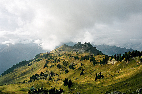 aneffigy:  Switzerland_2008-23 (by randy byte)